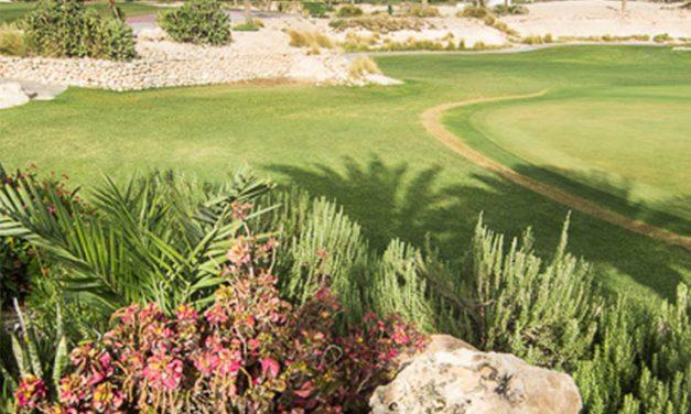 Doha accélère pour développer l'offre golfique