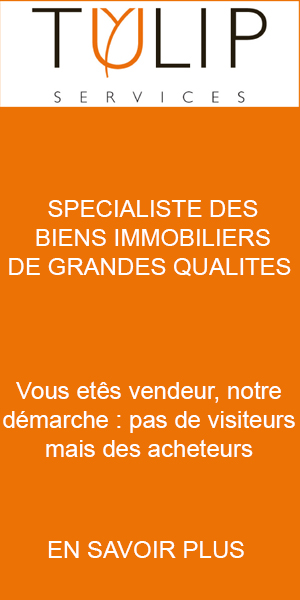 Tulip Services immobilier